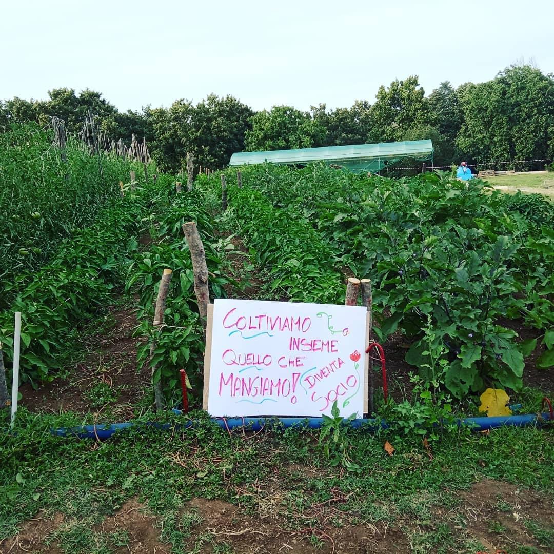 Una comunità agricola nella capitale: nasce la prima CSA di Roma