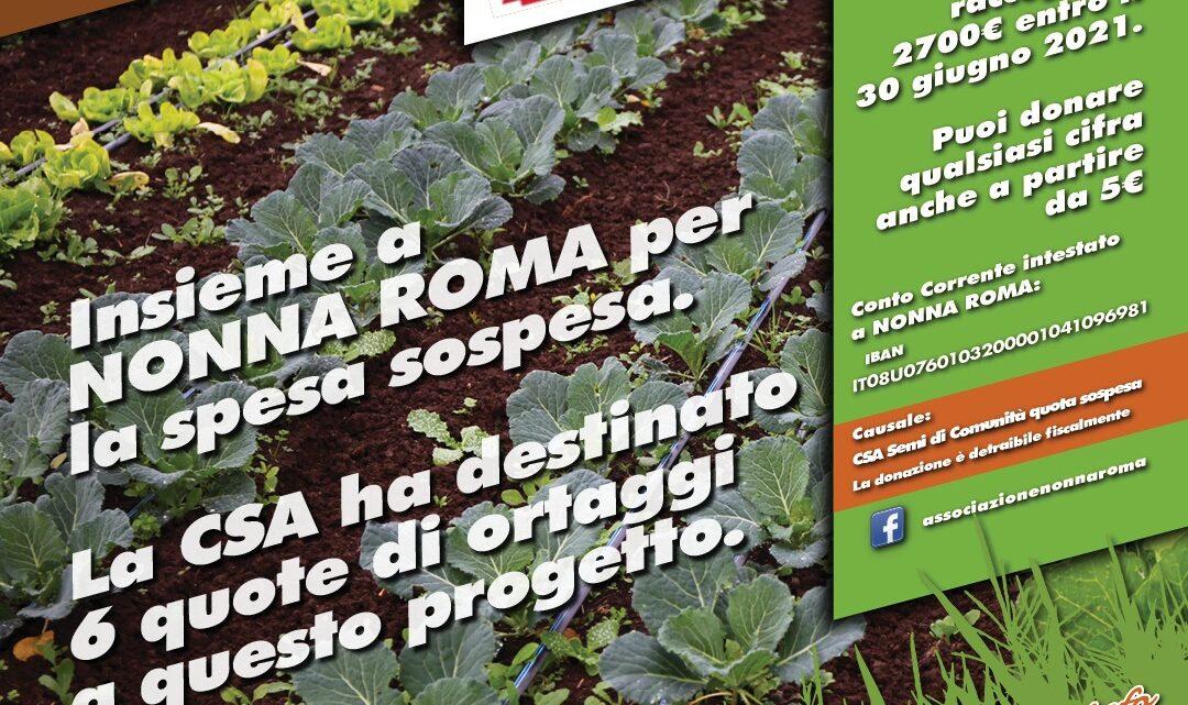 CSA e Nonna Roma: insieme nel 2021
