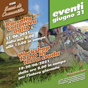 Raccolta collettiva aglio @ CSA Via del Prato della Corte 1602A